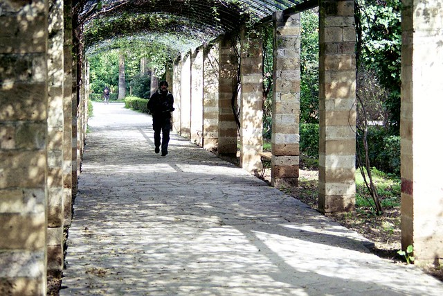 Arch Walkway
