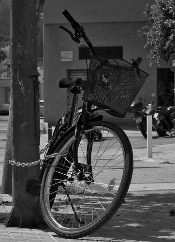 velocípedos