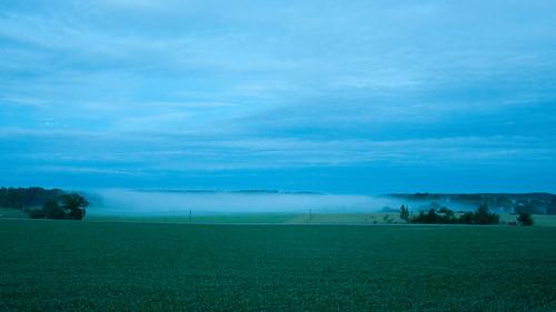 mist evening sweden sverige