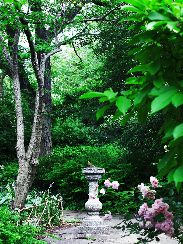 the shakespear garden 6