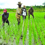 Improved farming technology