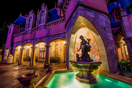 world travel vacation color fountain night landscape orlando nikon florida disney cinderella wdw walt ultrawide fontaine hdr fantasyland 2014 uwa cendrillon d610