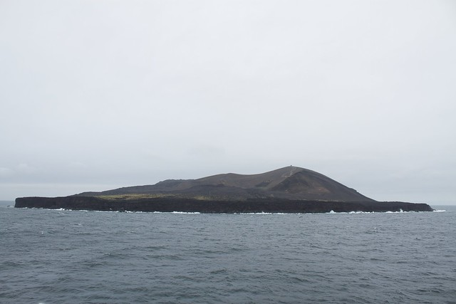 Header of Surtsey