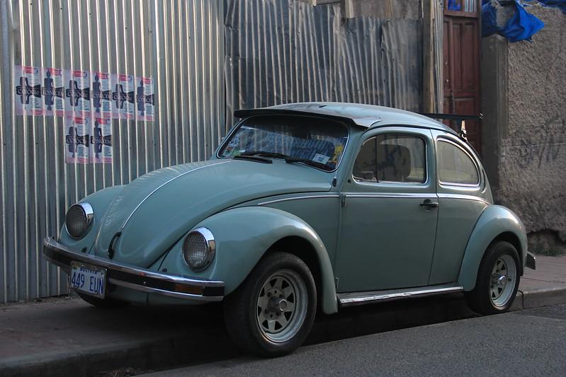 Beetle, Potosi