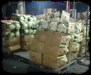 份量十足的高麗菜容易把紙箱壓壞,無法重複使用。圖片來源:綠粉絲