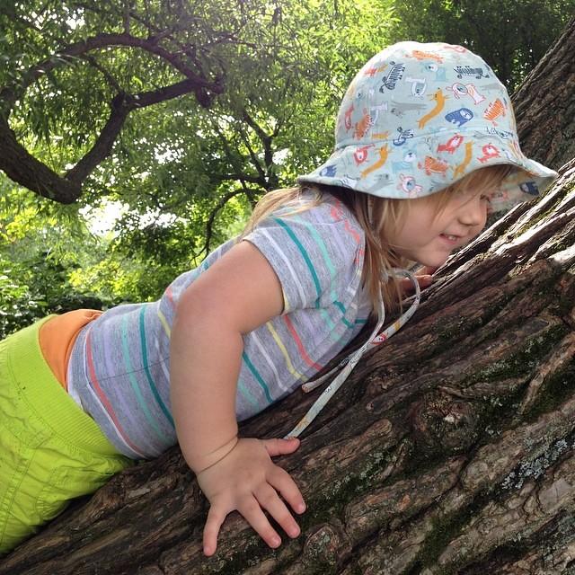 Enjoying her high perch. #latergram