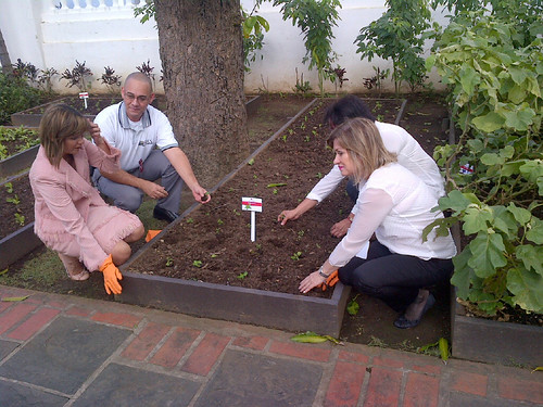 First Lady Wilma Pastrana Jiménez And Others Plant Seeds In Peopleu0027s Garden.