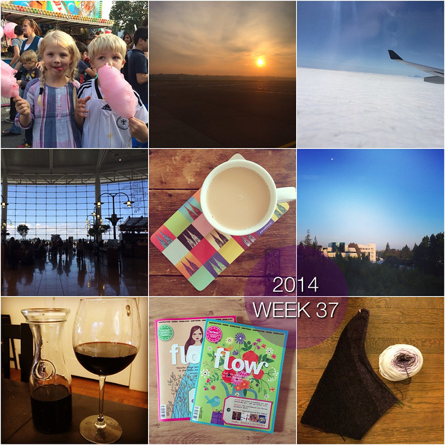 2014 in pictures: week 37