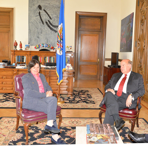 OAS Secretary General met with the UNDP Director for Latin America and the Caribbean