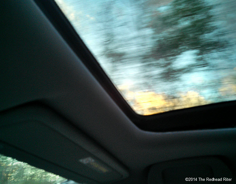 sunshine passing trees open sunroof in car