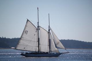 IMG_3411 - Port Townsend WA - 2014 Wooden Boat Festival - Schooner ADVENTURESS