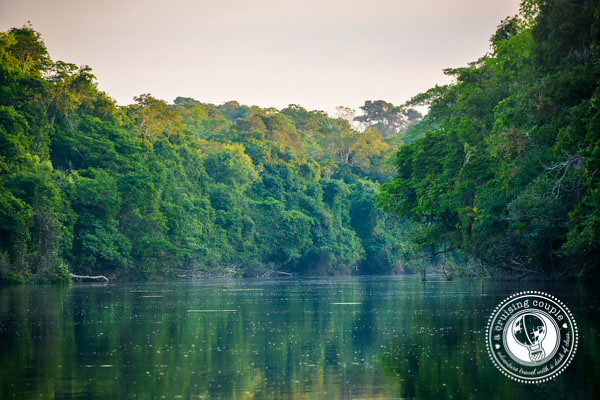 River in Southern Amazon