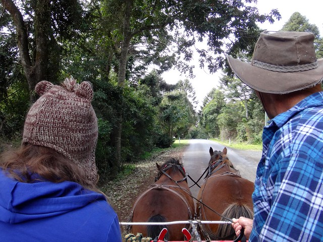 Riding in a Horse and Cart