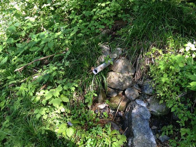 夜叉ヶ池 登山道 水場