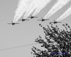 Blue Angels Fly-Past in Black & White