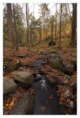 Bushkill Falls in autumn