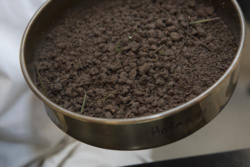 Soil Under Scrutiny at PNNL