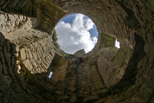 Ballyloughlan Castle tower shot