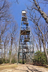 Cook Forest Fire Tower