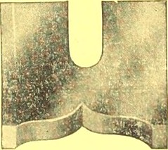 "Image from page 1488 of ""Canadian wood products industries"" (1922)"