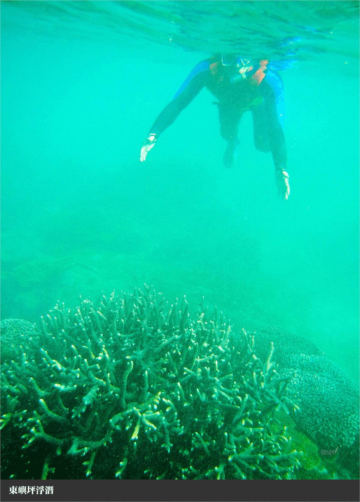東嶼坪浮潛