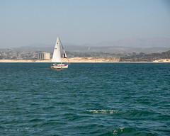 View of Monterey as we return to the dock.
