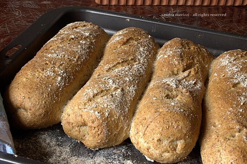 filoncini di pane integrale
