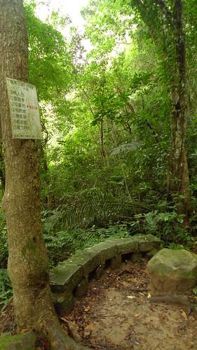 20140719-鳴鳳古道 (79)
