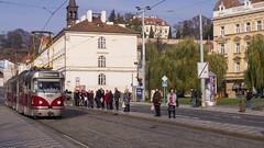 Prague tram 8251