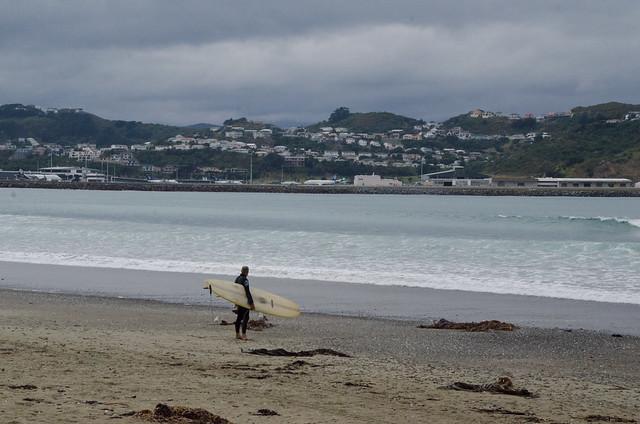 surfer at lyall bay