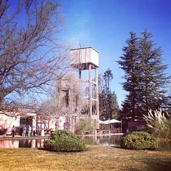 #Bodega en #Mendoza