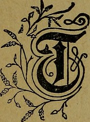 "Image from page 79 of """"Little Meg and I"", and other poems"" (1889)"
