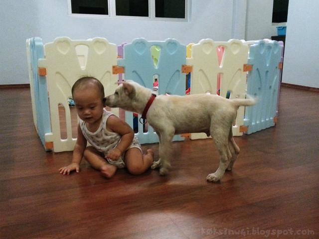 Benji and Darwin