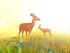 [Oh my deer]