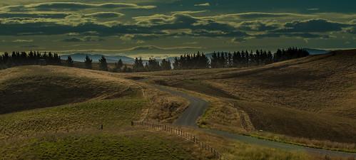 newzealand canterbury levelsvalley