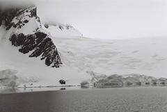Antarctica Lost Film (14)