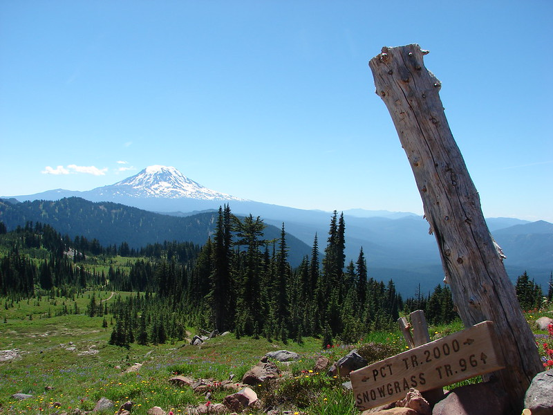 Mt. Adams from the PCT