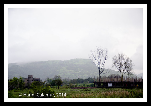 Lonavala - Two Trees (1 of 1)