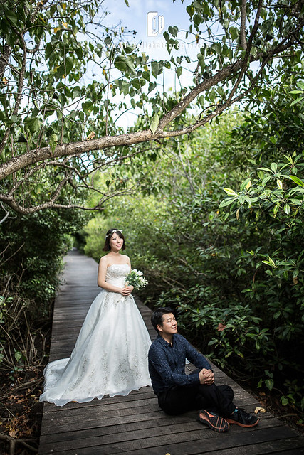 mangrove-forest-gpbaliphotography-3