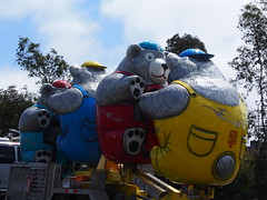 Bears or Koalas