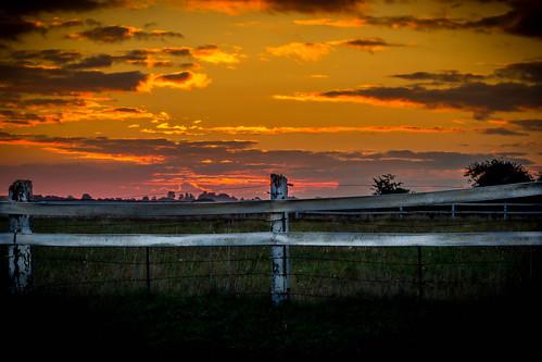 Sunrise over a paddock