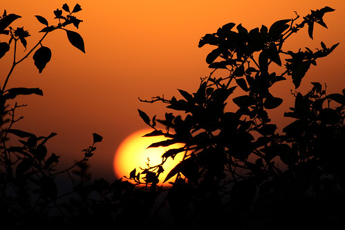 sunset israel ombrechinoise coucherdusoleil