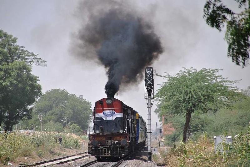 307 Camel safari a Jaisalmer (50)