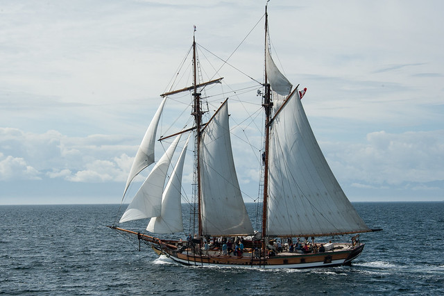 Pacific Swift under sail