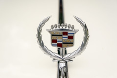 symbol, trophy, award, emblem,