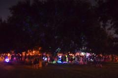 754 Midsummer Mardi-Gras at Palmer Park