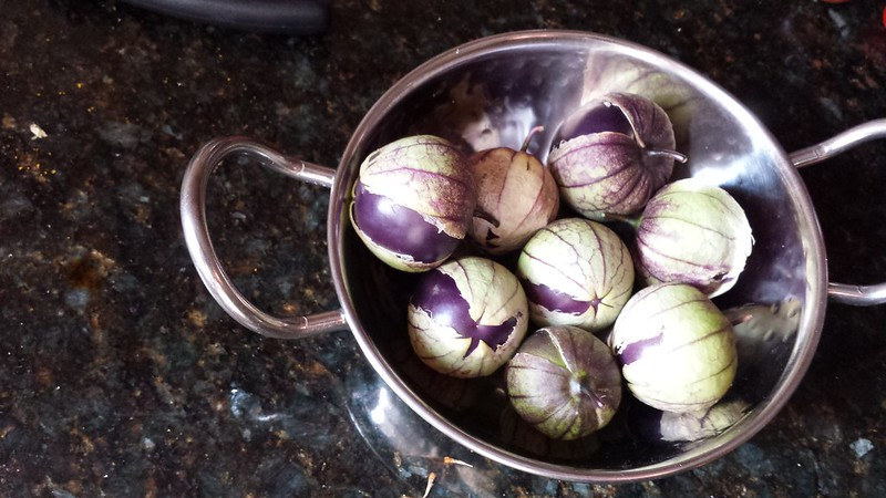 Purple tomatillos