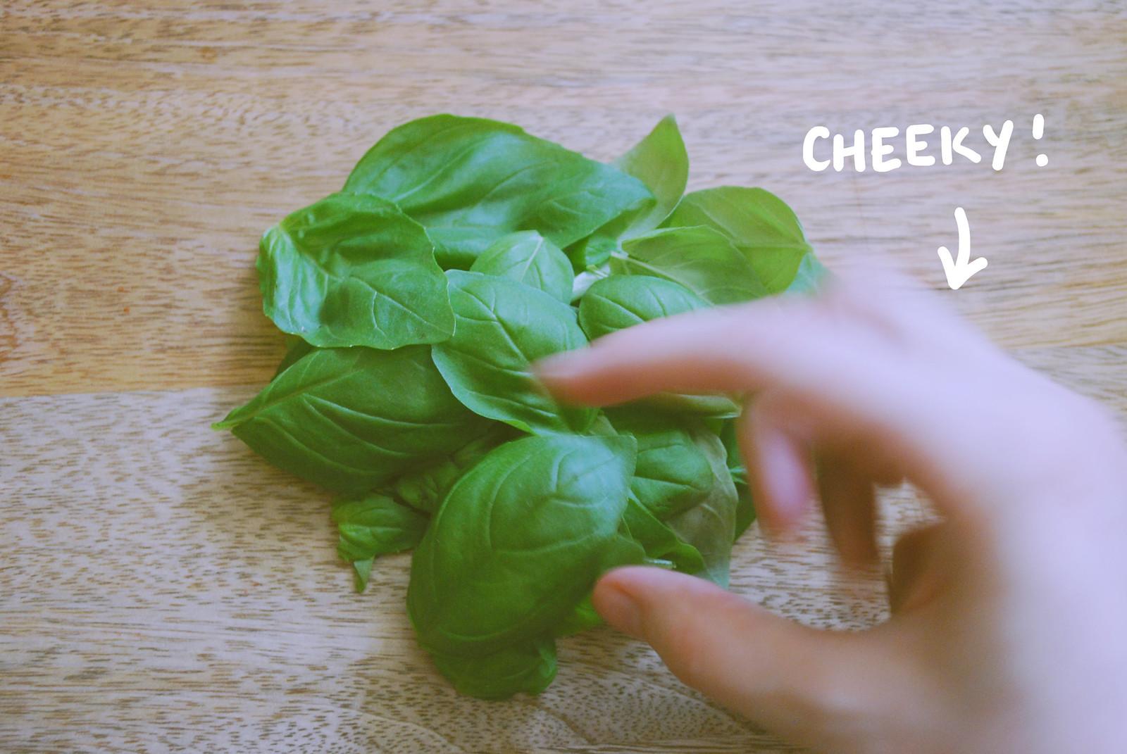 Cheeky Basil herbs