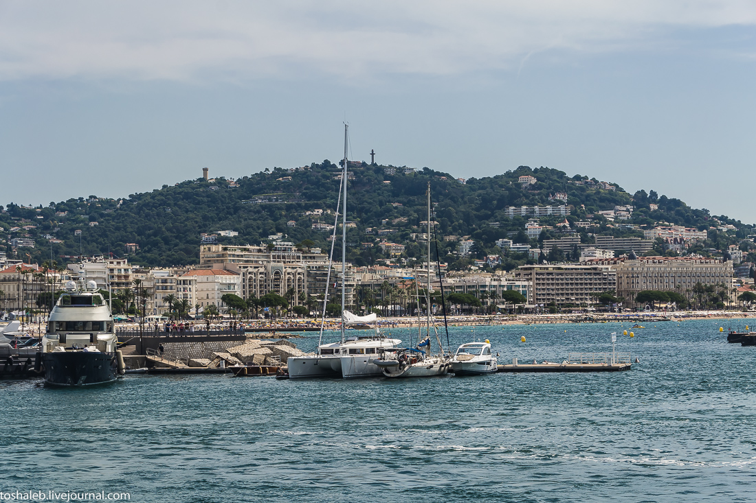 Cannes-52