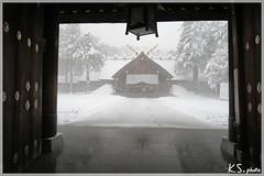 日本北海道.札幌_北海道神宮.21